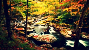 appalachian-trail-hike_zps74d0dc05